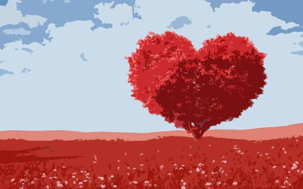 imagenes del valor del amor